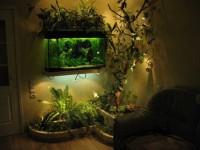 Оформляем аквариум своими руками: советы дизайнеров по украшению и оформлению + 53 фото