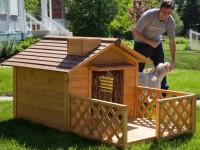 Будка для собаки своими руками: 57 фото создания прочного дома для Вашего питомца!