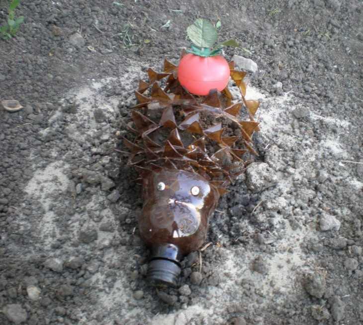 Поделки из пластиковых бутылок фото ежик
