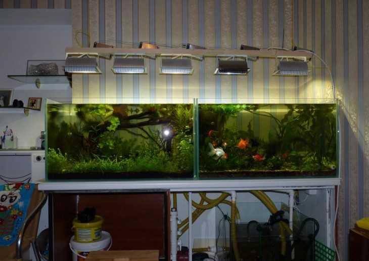 Сделать аквариум на 250 литров своими руками 35