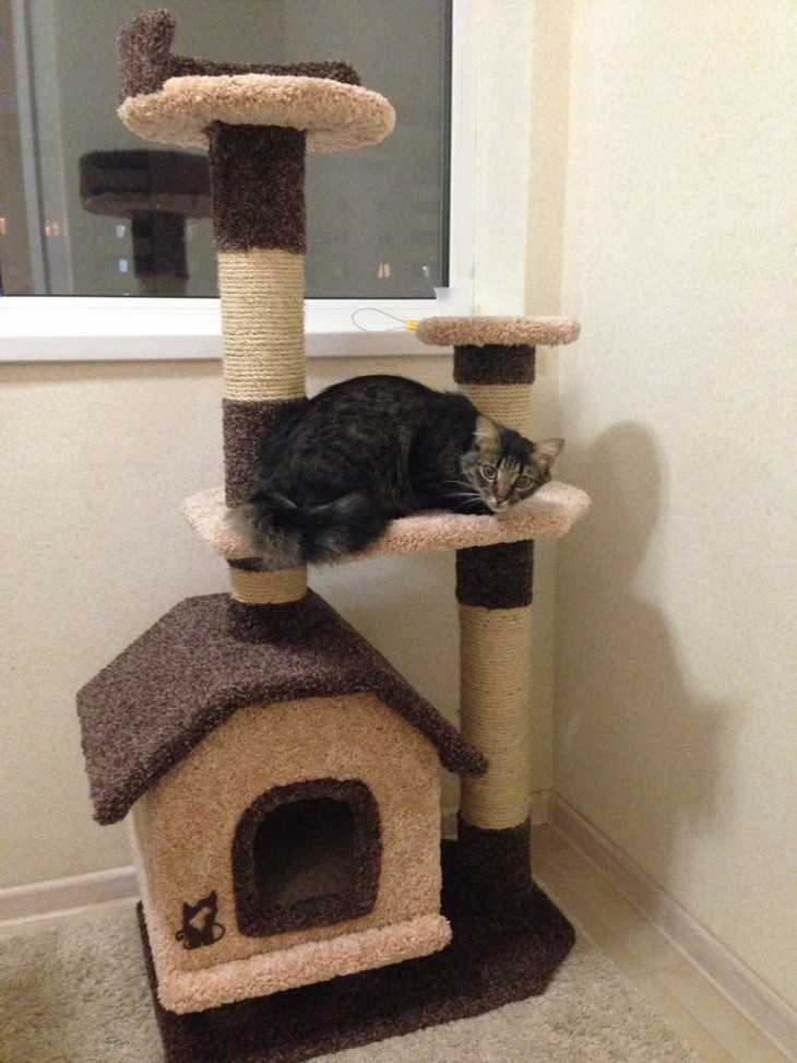 Фото домика для кошки своими руками фото 24