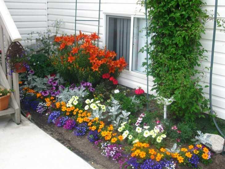 Сад огород своими руками скачать фото фото 341