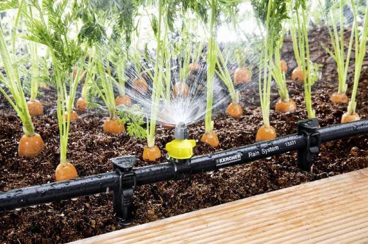 Капельный полив для капусты своими руками