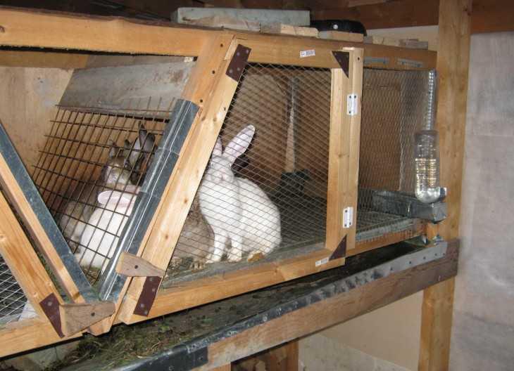 Как изготовить своими руками клетку для кроликов