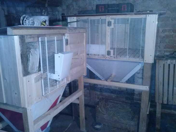 Модульные клетки для кроликов своими руками 66