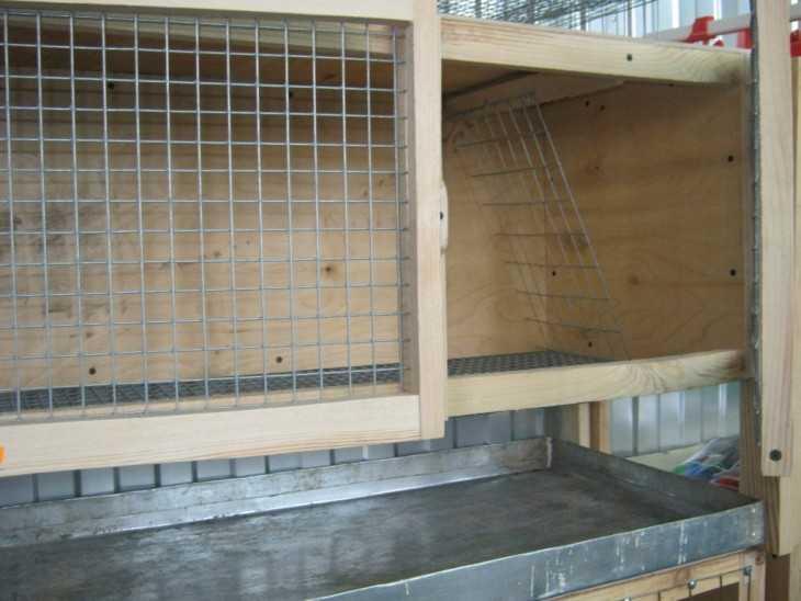 Клетки для содержания кроликов своими руками подробные чертежи и схемы фото 215