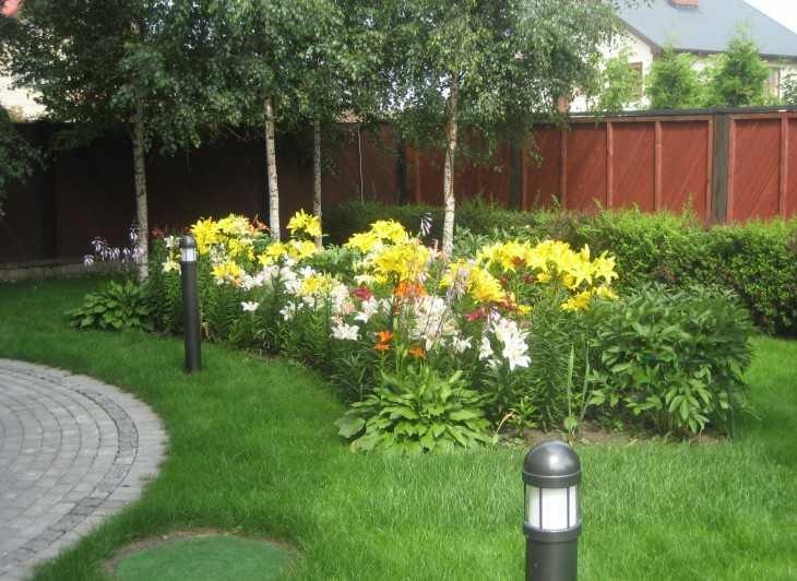 Дача сад огород полив
