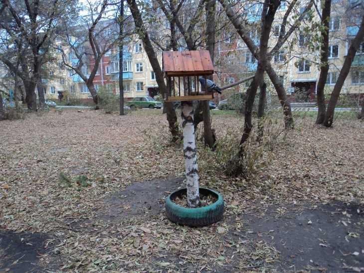 Креативная кормушка для птиц своими руками фото 10