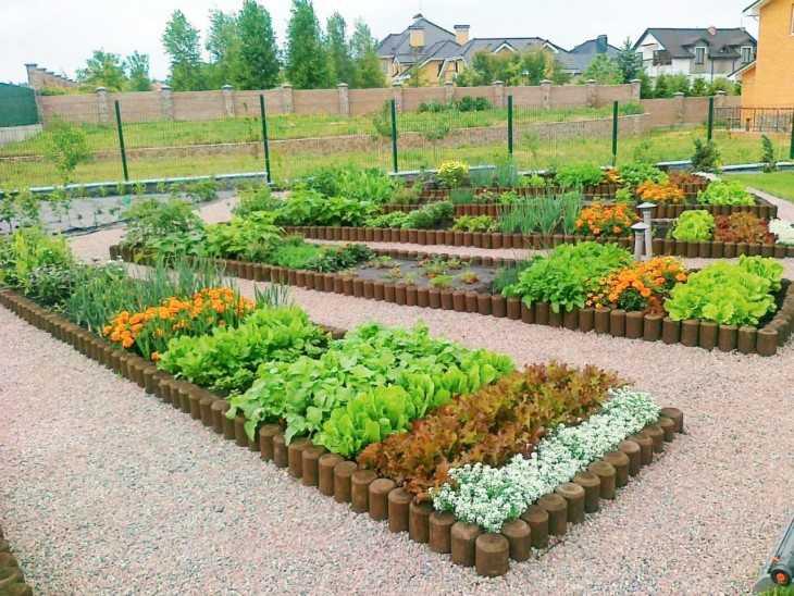 Сад огород своими руками скачать фото фото 642