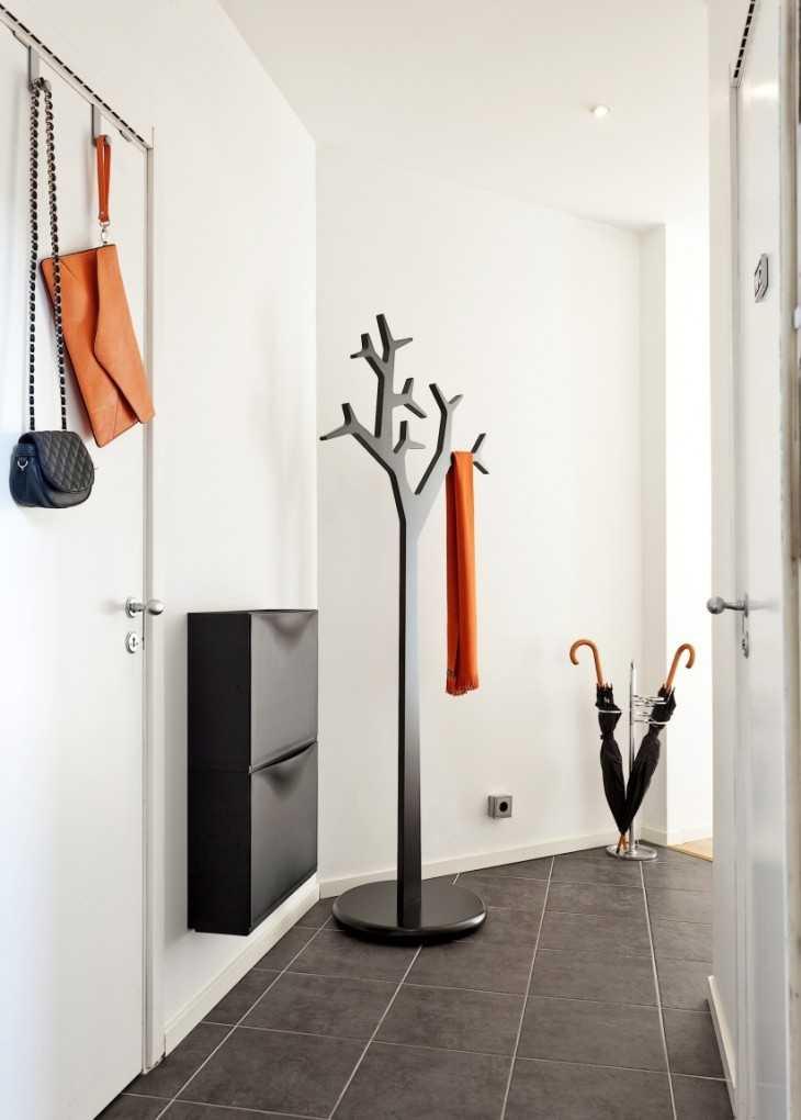 Лимон дерево из косточки в домашних условиях фото
